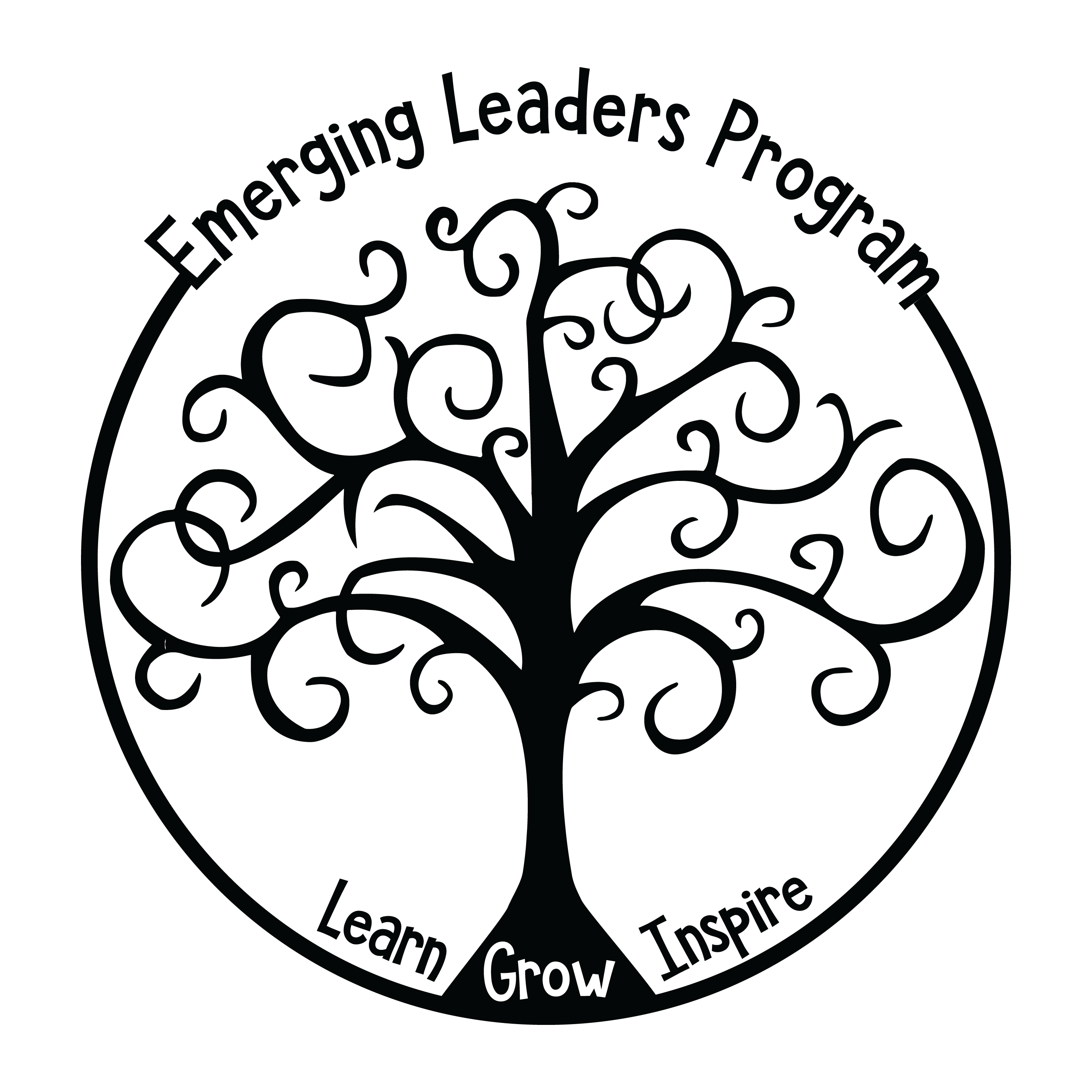 emerging leaders program Philanthropic Leadership Resume